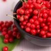15 Рослин, які допомагають нормалізувати роботу щитовидної залози