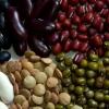 4 Віда речовин, що знижують захисні сили організму