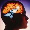 Абсцес головного мозку
