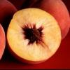 Чим годувати хвору печінку
