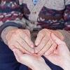 Що таке хвороба альцгеймера, її симптоми, лікування, причини розвитку