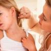 Лікування корости в домашніх умовах - найефективніші способи