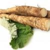 Лікування коренем лопуха