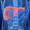 Народні засоби лікування гепатозу