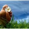 Народні засоби лікування грибка нігтів