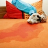 Нетримання сечі у дітей: причини і лікування