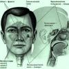 Озена. Причини, симптоми і лікування озени