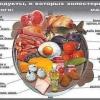 Підвищений холестерин в крові - міфи і реальність