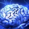 Засмучений мозок - «епідемія» двадцять першого століття (стаття 1)