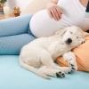 Запори при вагітності: що робити