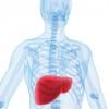 Жировий гепатоз печінки лікування народними засобами